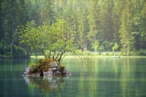meer, groen, meditatie, DANK methode